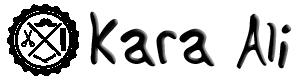 Berber WordPress Teması